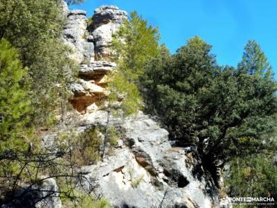 Rambla del Avellano-Arbeteta; gr 124 volcan olot marchas de montaña gorbea parque natural